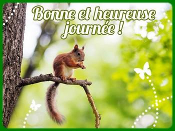 Bonne journée écureuil
