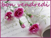 xWebmaster_1441336013_8b117a7e.jpg.pagespeed.ic.VwSdBxMb-c